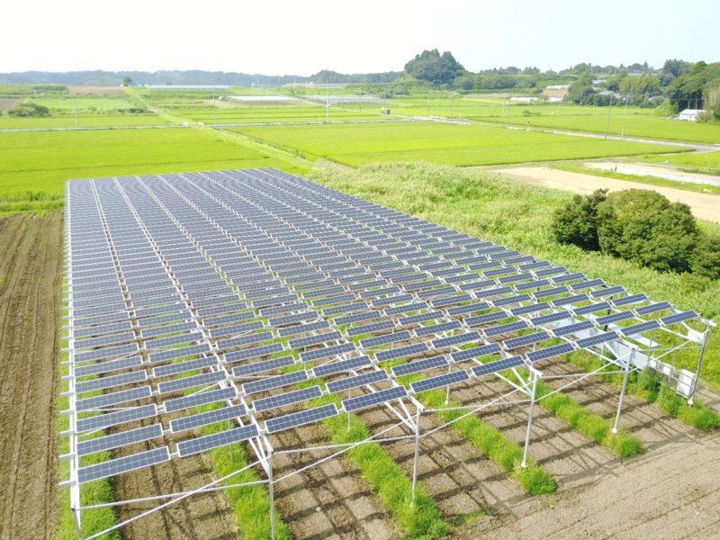 すそ野が広がるソーラーシェアリング、農業と発電を両立させる横浜環境デザインの強み