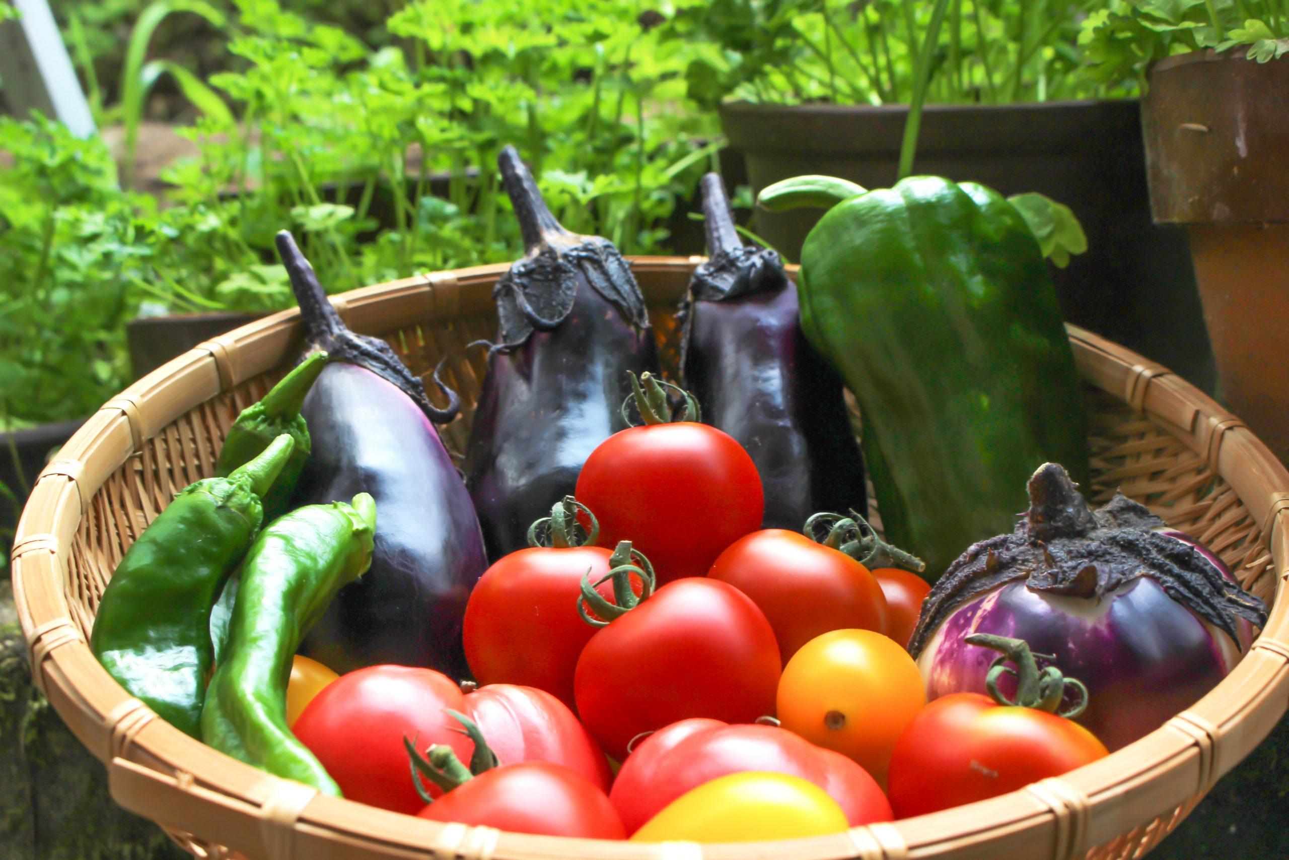 物流:スーパーマーケットの野菜はたくさんの荒波を超えて、皆さまのおなかに入っております。