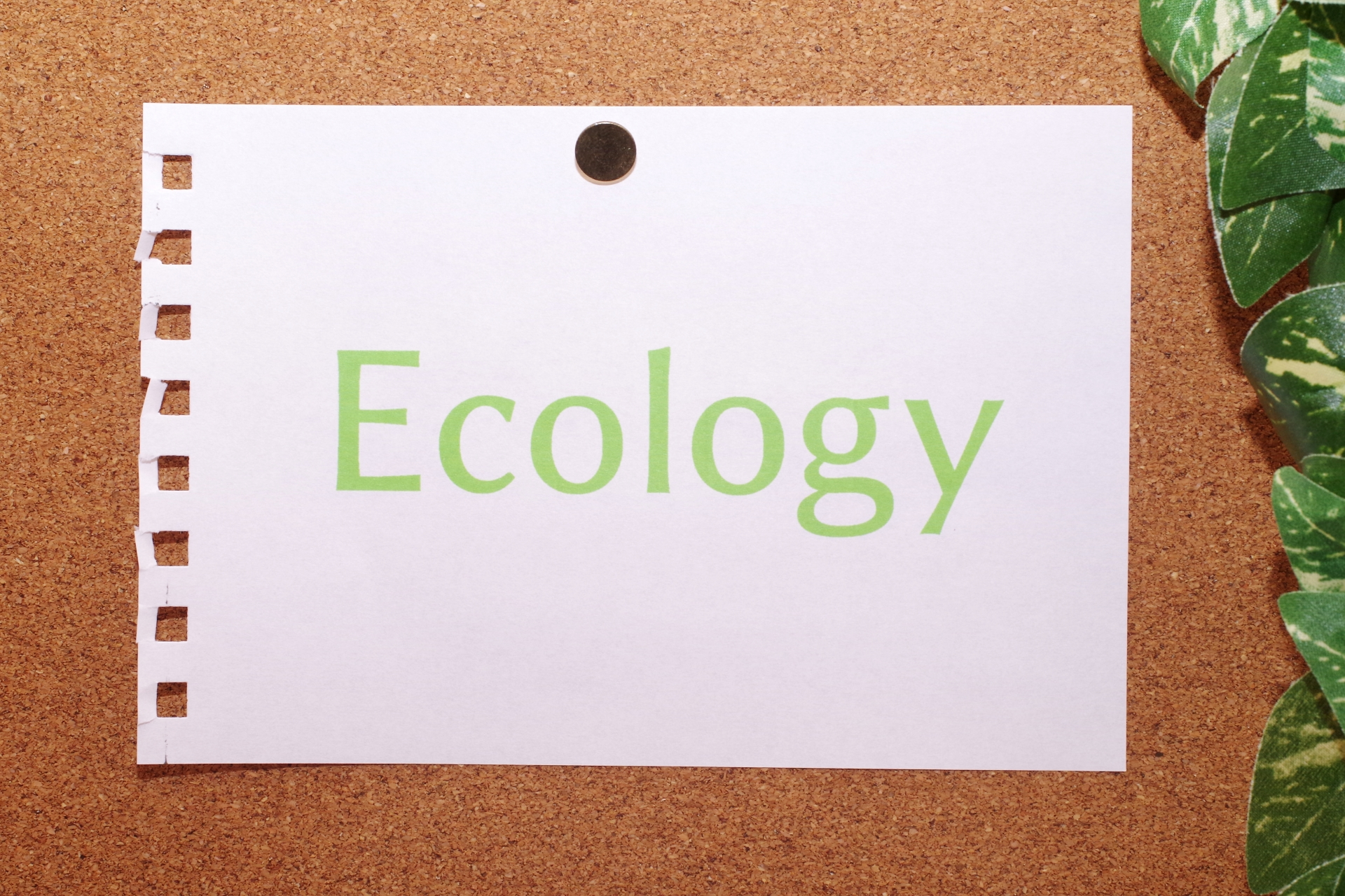 最新事情「環境にやさしい印刷」