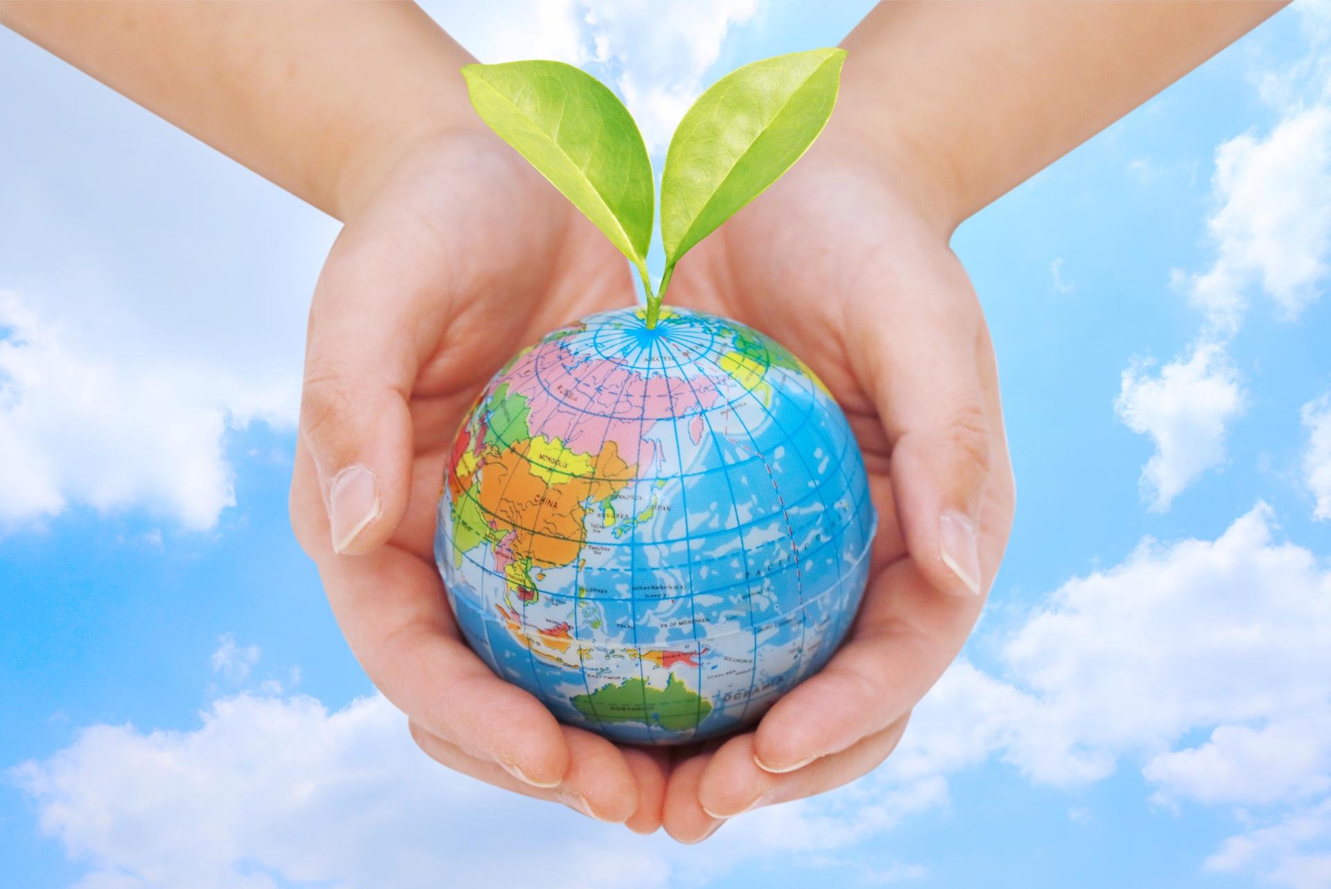 【SDGsの第一歩!】再エネ100%電力プランへ切り替えのすゝめ