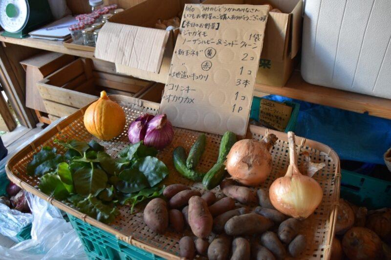 取材日にブロ雅農園さんが卸に来た野菜7種。聞いたことのないような珍しい野菜ばかりでした!