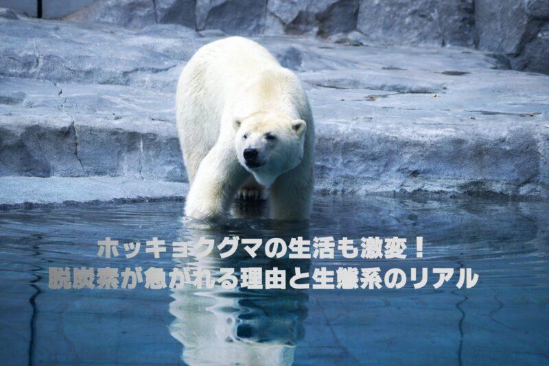 ホッキョクグマの生活も激変!脱炭素が急がれる理由と生態系のリアル