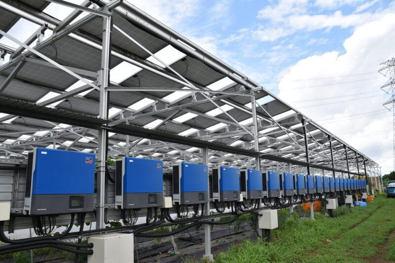 【農業×太陽光発電】ソーラーシェアリングの成功と失敗(後半)