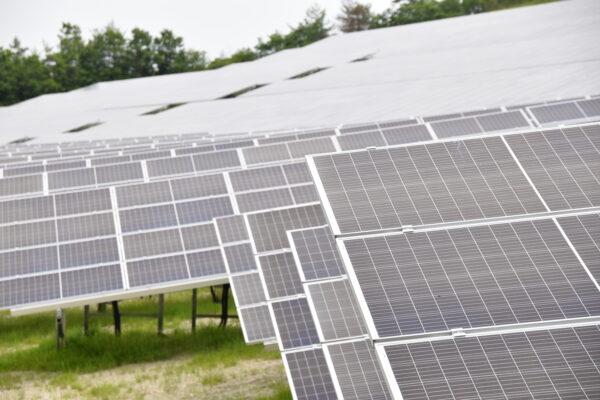 中古太陽光発電所(セカンダリー)市場の現状とポイント